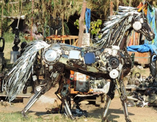 Recycled horse, Harare