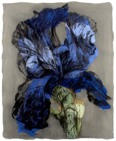 iris kentridge