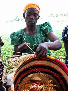 rwanda spiny rush grass