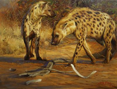 Heyenas - Kruger National Park
