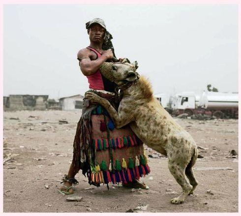 hyena handlers